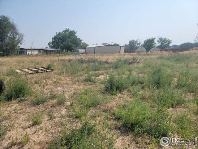 329 Lilac Dr, Lochbuie, CO 80603 (MLS #948535) :: J2 Real Estate Group at Remax Alliance