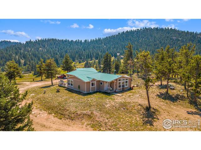 140 Deadhorse Mountain Ct, Livermore, CO 80536 (MLS #948574) :: Tracy's Team