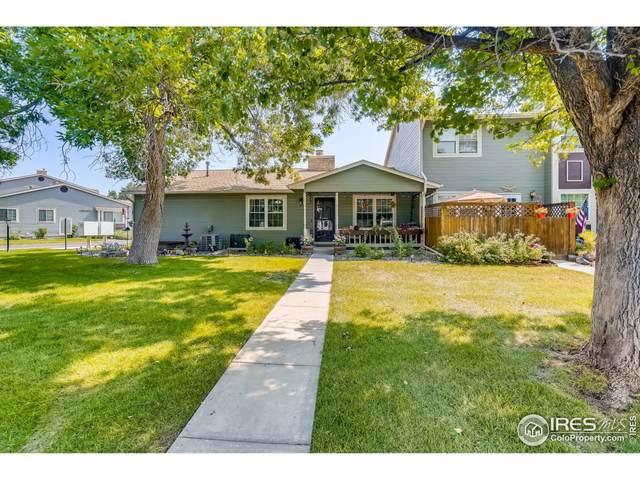 10050 Quivas St, Thornton, CO 80260 (MLS #948577) :: Find Colorado