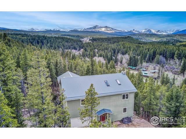 1015 Pine Cone Cir, Ward, CO 80481 (#948685) :: iHomes Colorado