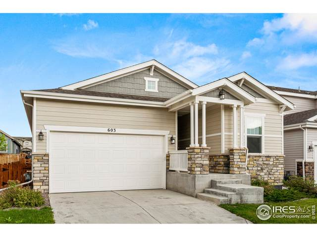 603 W 173rd Ave, Broomfield, CO 80023 (MLS #949106) :: Downtown Real Estate Partners