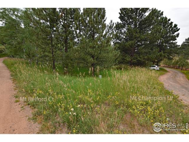 1133 Mount Champion Dr, Livermore, CO 80536 (MLS #949148) :: Find Colorado
