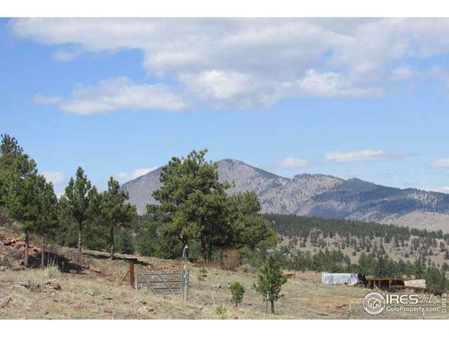 2853 Stone Canyon Rd, Lyons, CO 80540 (MLS #949209) :: You 1st Realty