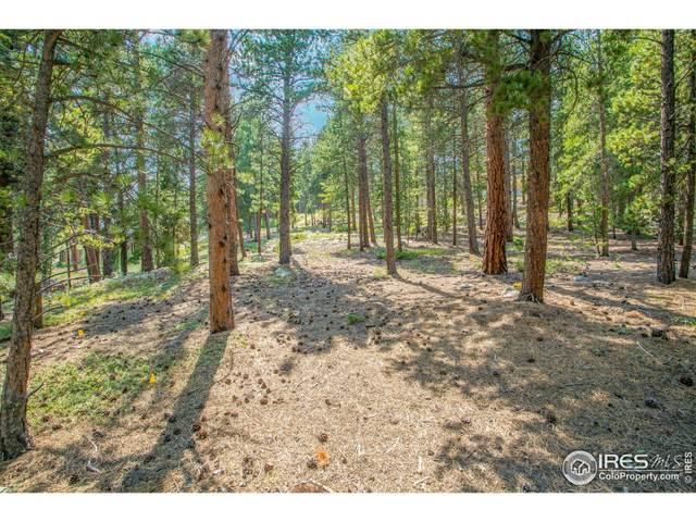 705 Mcmillen Way, Nederland, CO 80466 (MLS #949492) :: Find Colorado