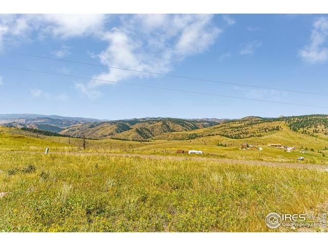 132 Sheep Mountain Ct, Livermore, CO 80536 (#949579) :: The Margolis Team