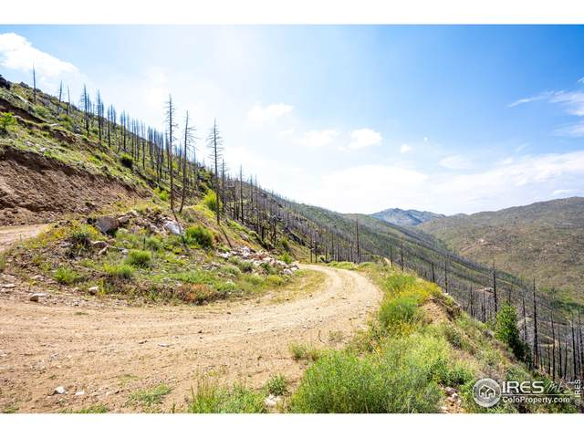 0 Tbd Stratton Park Rd Lot 5, Bellvue, CO 80512 (MLS #949838) :: Coldwell Banker Plains