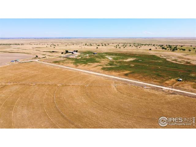 7327 County Road K, Wiggins, CO 80654 (MLS #949927) :: You 1st Realty