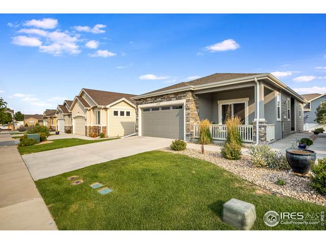 6316 Corvina St, Evans, CO 80634 (MLS #950039) :: Downtown Real Estate Partners