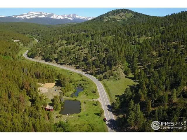 0 Coal Creek Canyon Rd, Nederland, CO 80466 (MLS #950058) :: Find Colorado