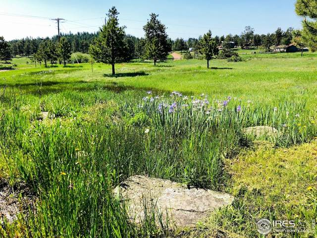 3316 Green Mountain Dr, Livermore, CO 80536 (MLS #950540) :: Find Colorado