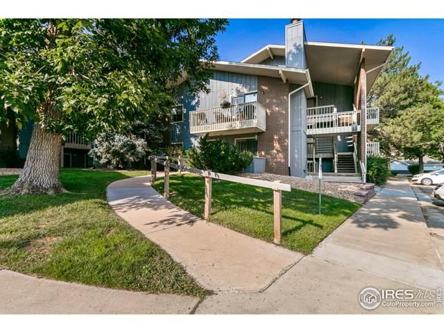 2800 Kalmia Ave #216, Boulder, CO 80301 (MLS #950728) :: Tracy's Team