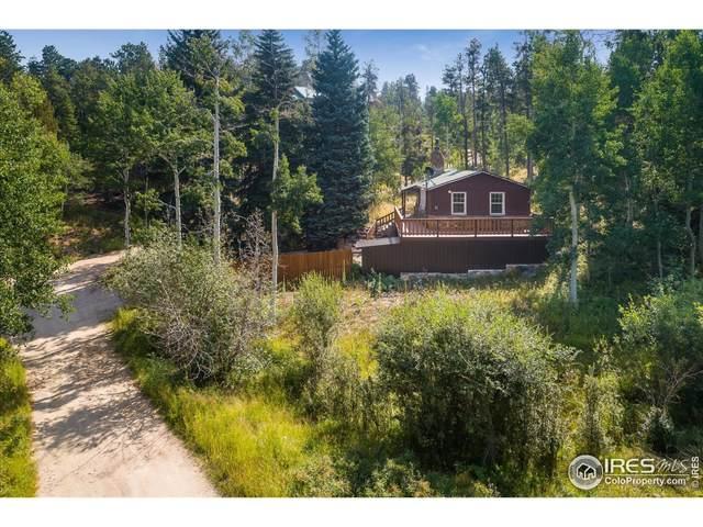 154 Olde Carter Lake Rd, Golden, CO 80403 (MLS #950798) :: Jenn Porter Group