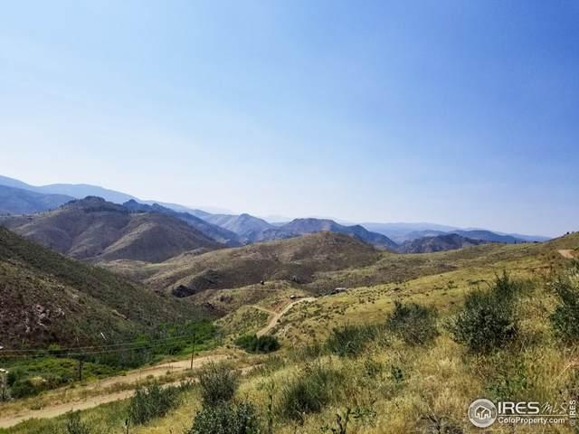 1425 Horse Mountain Dr, Livermore, CO 80536 (MLS #950909) :: Find Colorado