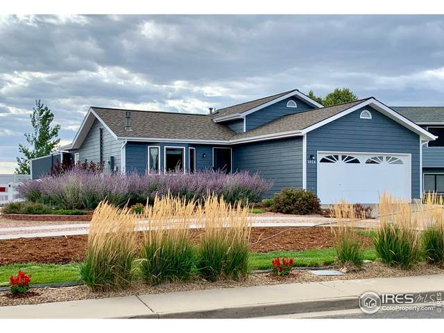 1016 23rd St SW, Loveland, CO 80537 (MLS #950993) :: You 1st Realty