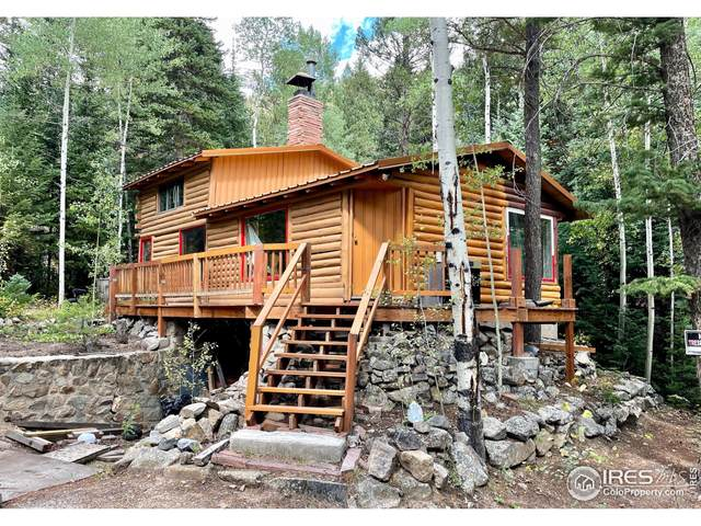 375 Morrison Ln, Empire, CO 80438 (MLS #951080) :: J2 Real Estate Group at Remax Alliance