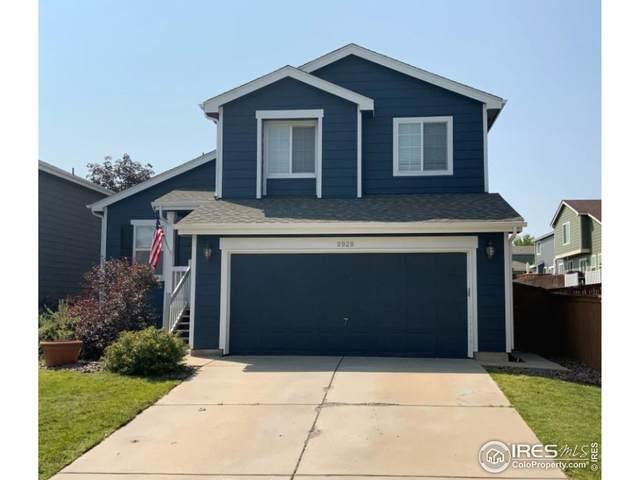 9928 Saybrook St, Highlands Ranch, CO 80126 (MLS #951081) :: Jenn Porter Group