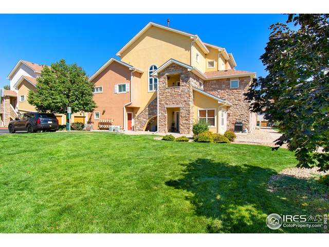 609 Lucca Dr, Evans, CO 80620 (MLS #951223) :: Tracy's Team