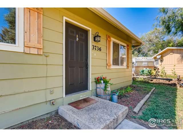 3736 Boxelder Ct, Wellington, CO 80549 (MLS #951486) :: Kittle Real Estate