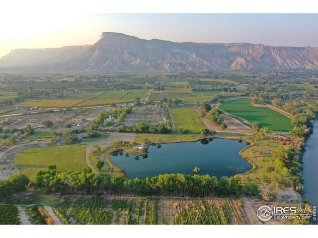 3521 F Rd, Clifton, CO 81520 (MLS #951623) :: Tracy's Team