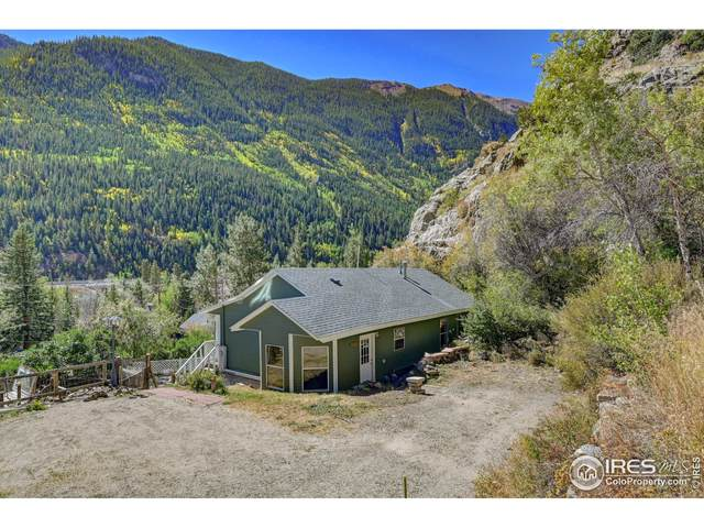 830 Willis St, Silver Plume, CO 80476 (MLS #951685) :: J2 Real Estate Group at Remax Alliance