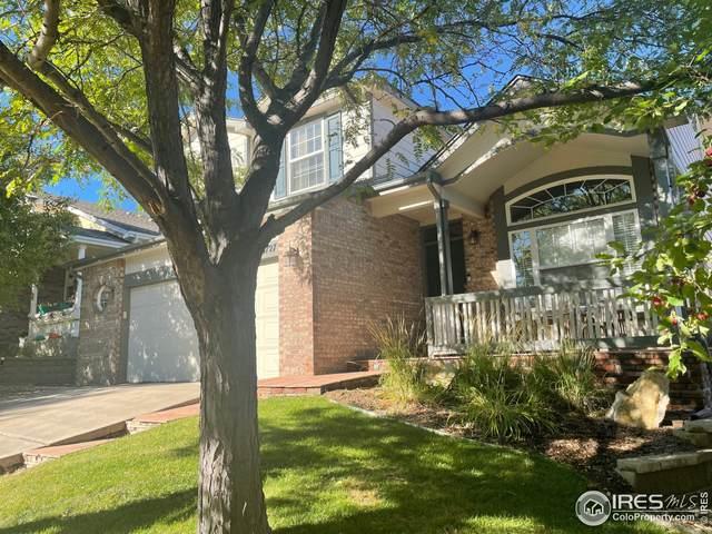13727 Adams St, Thornton, CO 80602 (MLS #951696) :: Find Colorado Real Estate