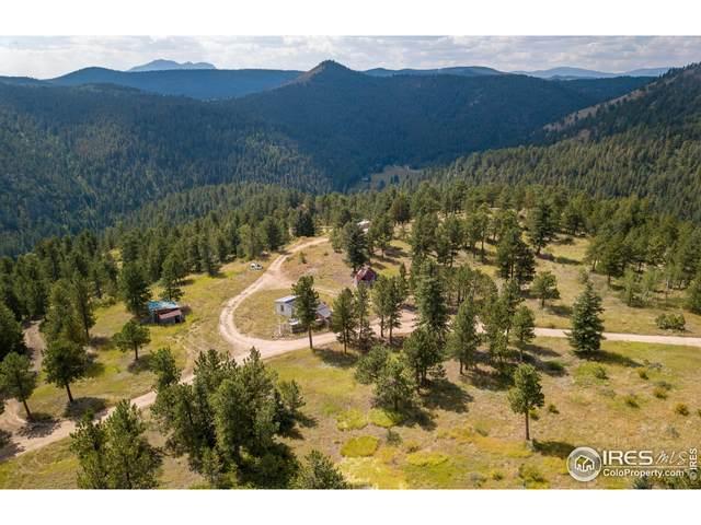 6185 Sugarloaf Rd, Boulder, CO 80302 (MLS #951820) :: Tracy's Team