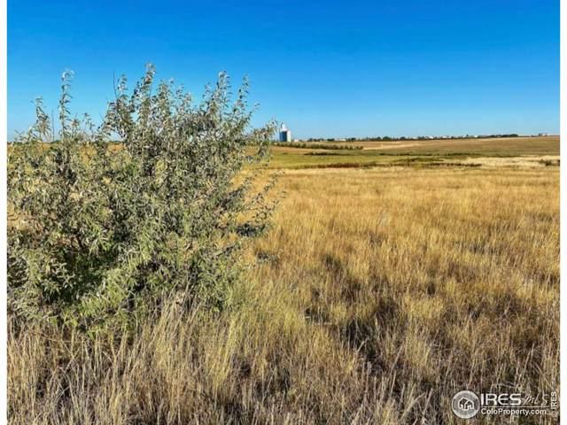 County Road Dd #Wp001 Parcel 3, Akron, CO 80720 (#951843) :: Symbio Denver