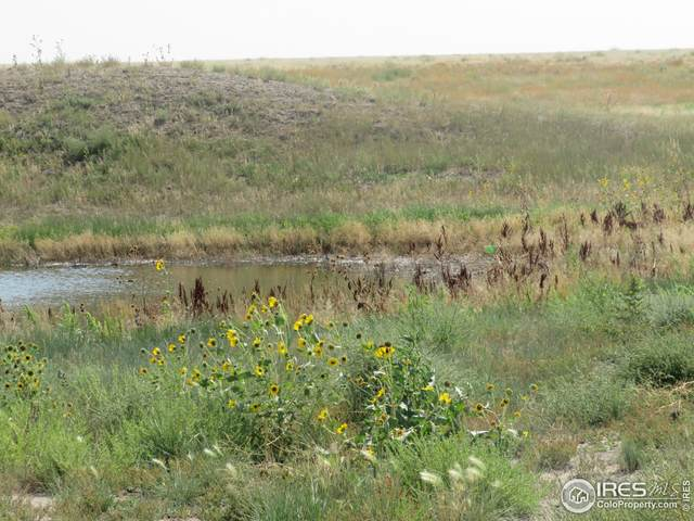 Lot 9 County Road 51, Ault, CO 80610 (MLS #951934) :: RE/MAX Alliance
