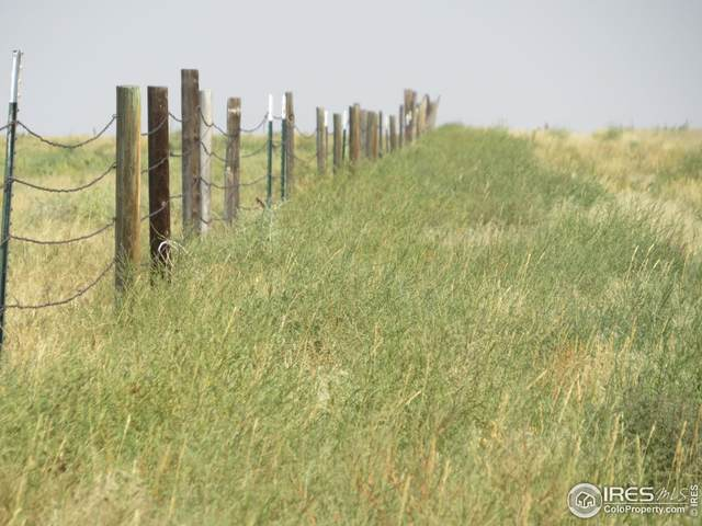 Lot 4 County Road 49, Ault, CO 80610 (MLS #951940) :: RE/MAX Alliance