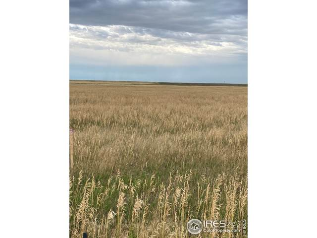0 County Road 102, Nunn, CO 80648 (MLS #951974) :: Bliss Realty Group