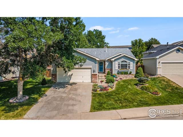 412 Derry Dr, Fort Collins, CO 80525 (MLS #952158) :: Tracy's Team