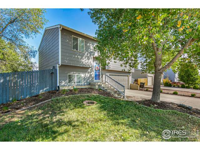 1027 E 24th St Rd, Greeley, CO 80631 (MLS #952235) :: J2 Real Estate Group at Remax Alliance