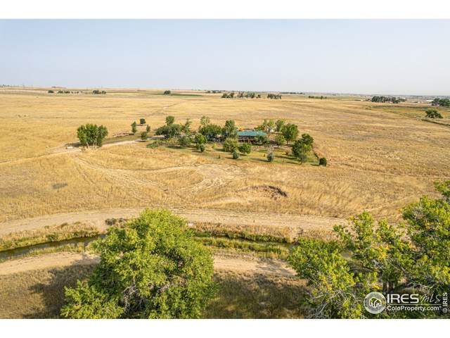 17129 County Road 14, Fort Lupton, CO 80621 (MLS #952446) :: You 1st Realty