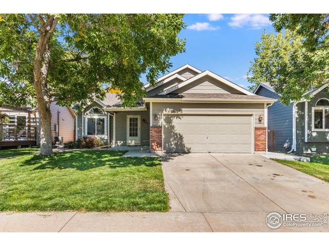 530 Walden Way, Fort Collins, CO 80526 (MLS #952569) :: Bliss Realty Group