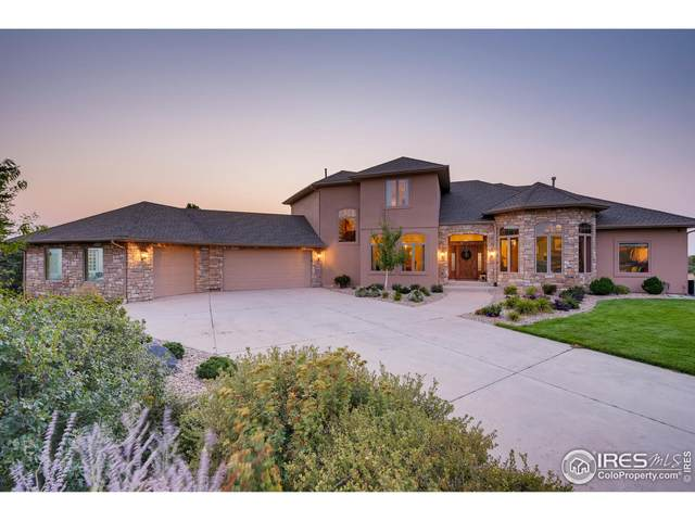 1043 Night Wind Cir, Castle Rock, CO 80104 (MLS #952630) :: J2 Real Estate Group at Remax Alliance