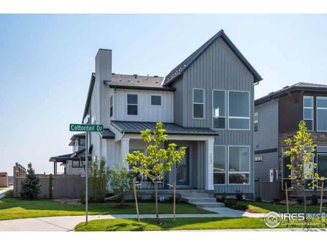 5687 Cottontail Dr, Longmont, CO 80503 (MLS #952738) :: Coldwell Banker Plains