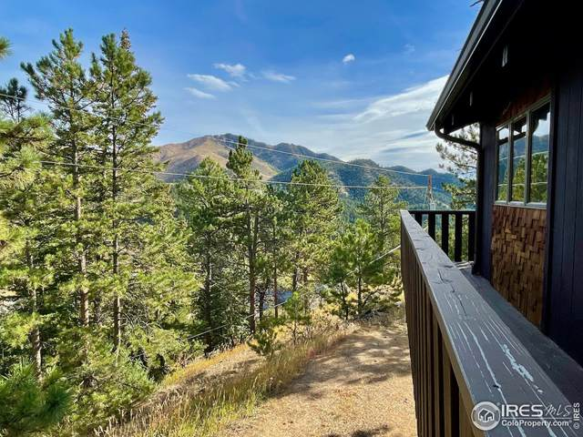 166 Porphyry Vw, Jamestown, CO 80455 (MLS #952882) :: J2 Real Estate Group at Remax Alliance
