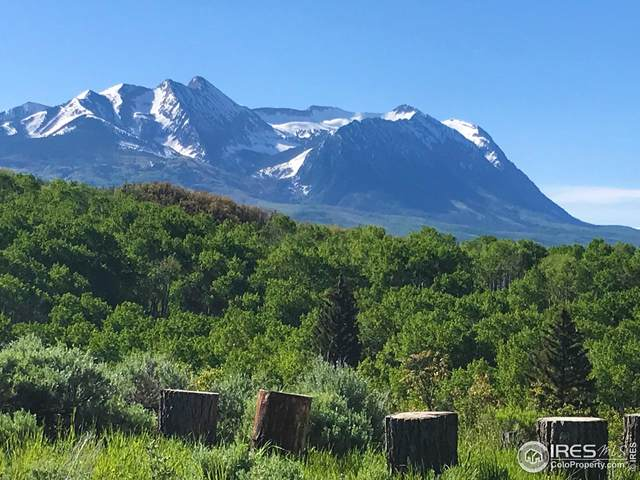 Tbd County Road 265, Somerset, CO 81434 (MLS #953270) :: J2 Real Estate Group at Remax Alliance