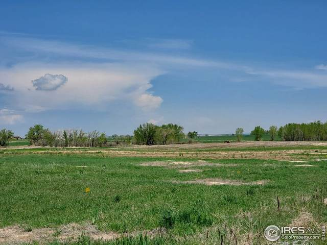 0 Lot B County Road 21, Fort Lupton, CO 80621 (MLS #953307) :: J2 Real Estate Group at Remax Alliance