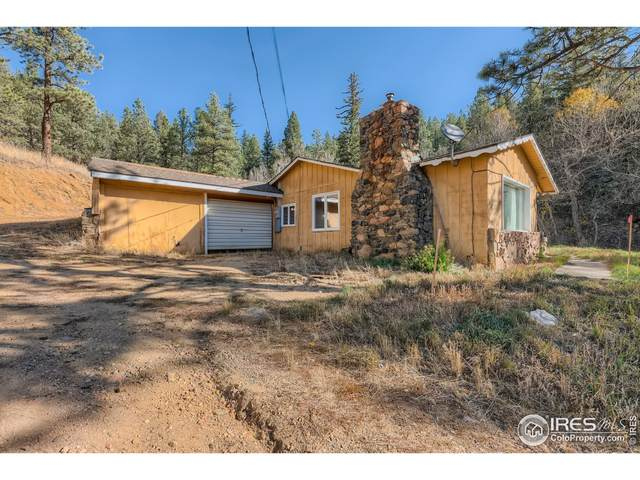 57833 Us Highway 285, Bailey, CO 80421 (MLS #953380) :: Bliss Realty Group
