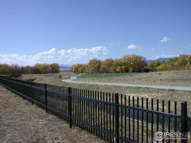 3357 Danzante Bay Ct, Berthoud, CO 80513 (#953461) :: The Griffith Home Team