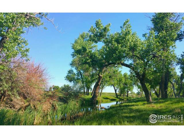0 County Road 170, Agate, CO 80101 (MLS #953541) :: RE/MAX Elevate Louisville