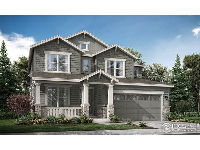 846 Foxglove St, Erie, CO 80516 (MLS #953553) :: You 1st Realty
