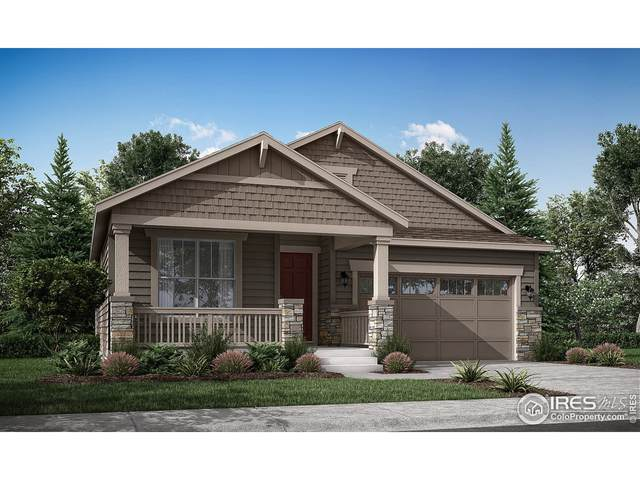 850 Wildrose Pl, Erie, CO 80516 (MLS #953587) :: You 1st Realty