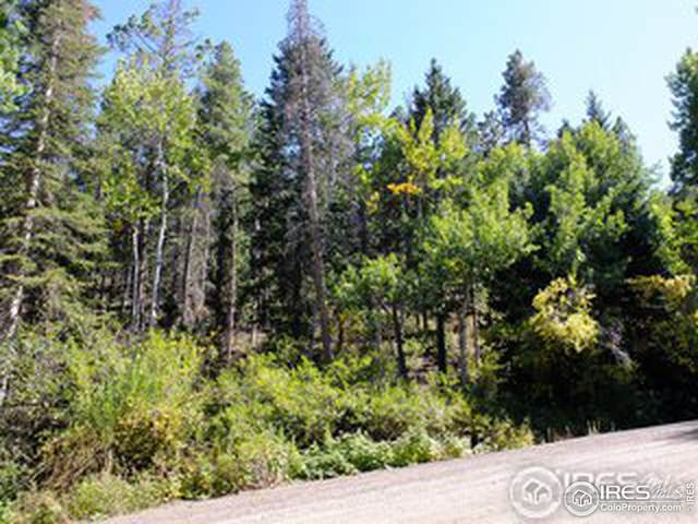 11686 Brook Rd, Golden, CO 80403 (MLS #953729) :: Sears Real Estate