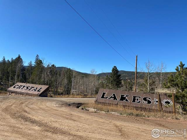 684 Crow Rd, Red Feather Lakes, CO 80545 (MLS #953820) :: Sears Real Estate
