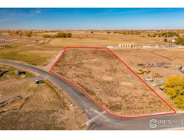 11618 Harpenden Ln, Fort Lupton, CO 80621 (MLS #953829) :: Sears Real Estate
