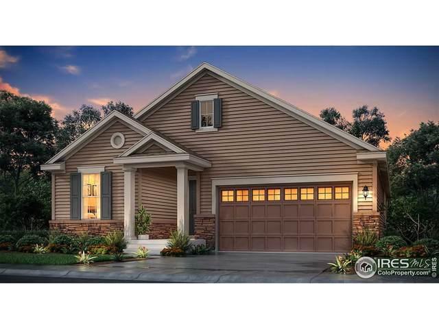 14490 Hudson St, Thornton, CO 80602 (MLS #953893) :: Sears Real Estate