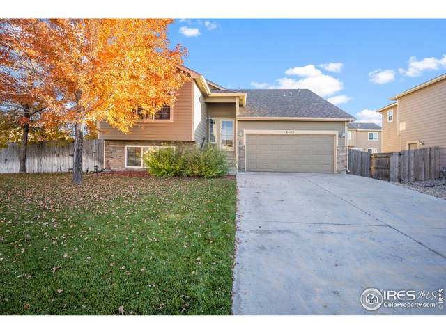 8402 17th St, Greeley, CO 80634 (MLS #953924) :: Sears Real Estate