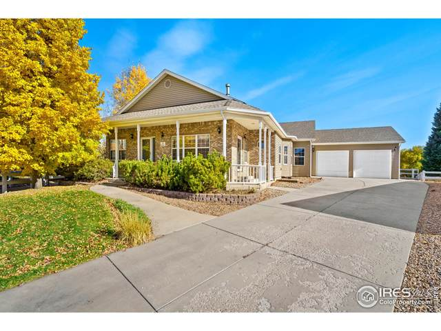 219 Cattail Bay, Windsor, CO 80550 (MLS #953970) :: RE/MAX Elevate Louisville